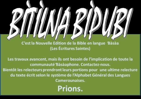 Nouvelle Edition Bible Bàsàa